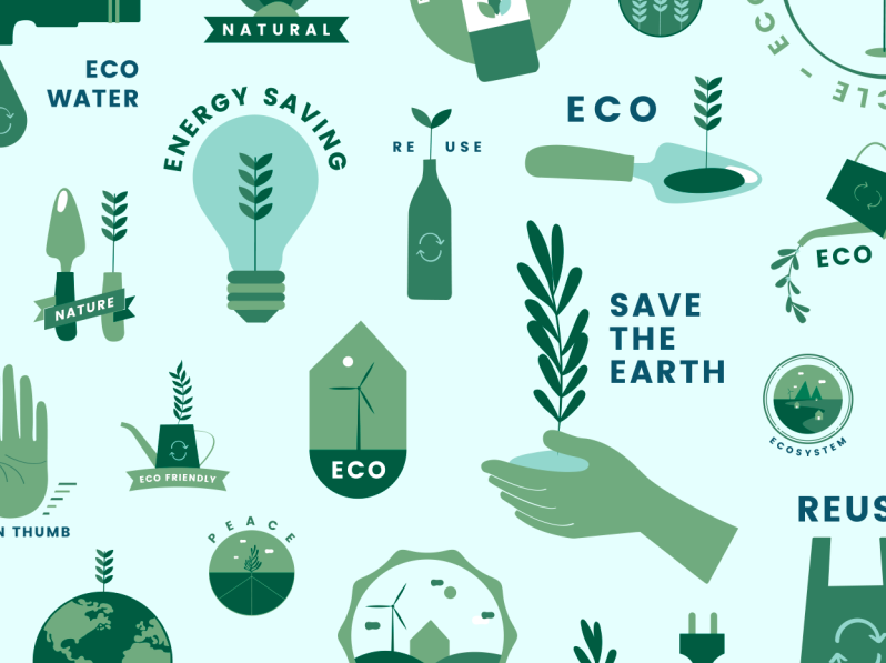 Best Sites To Shop For Eco