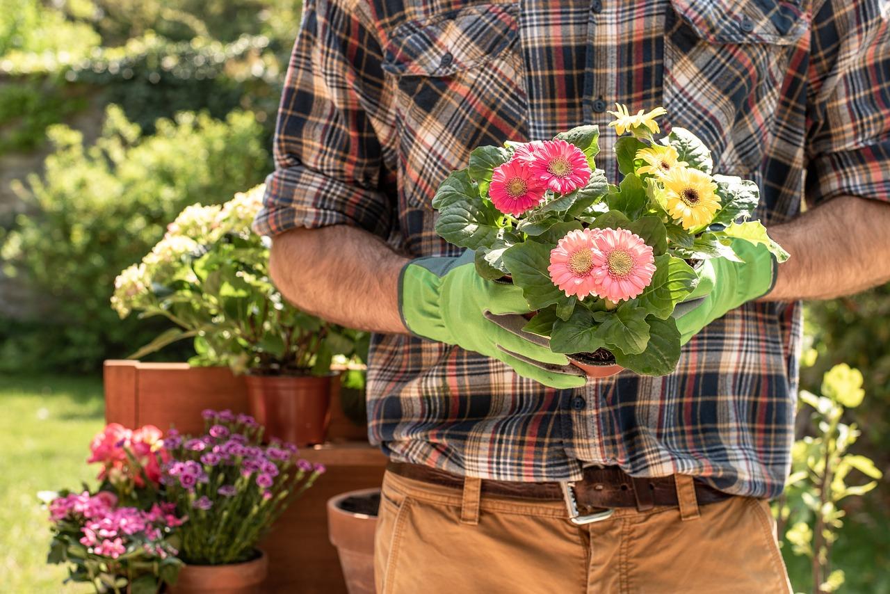 maintain a healthy garden