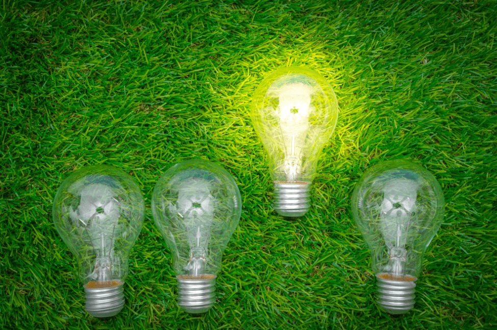 choosing lightbulbs