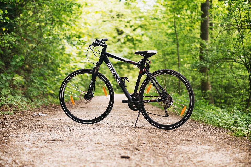 bicycle green transportation