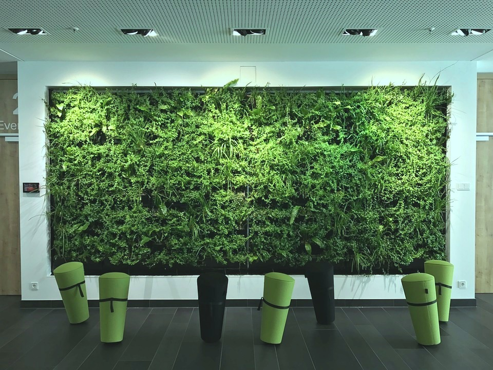 green office fitout