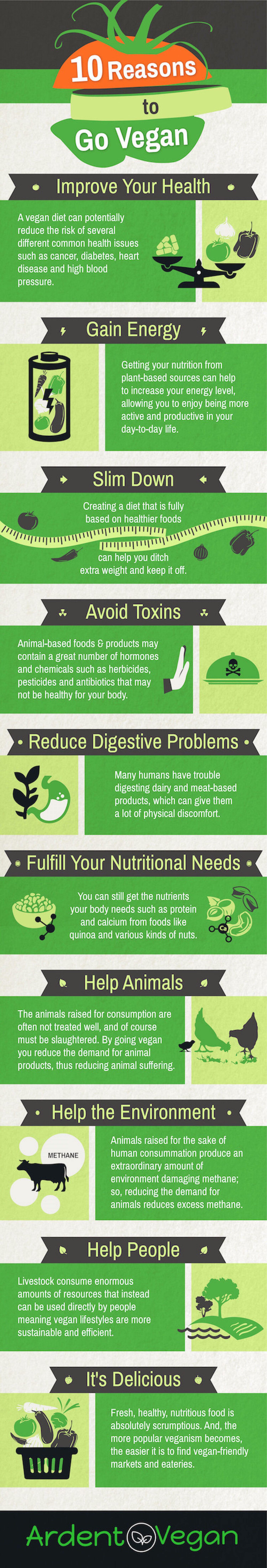 an overview of several reasons to become a vegeterian