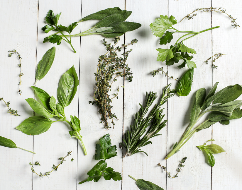 herbs for brain and body